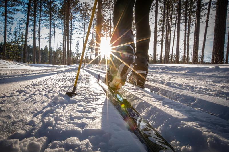cross-country-skiing-Thumb
