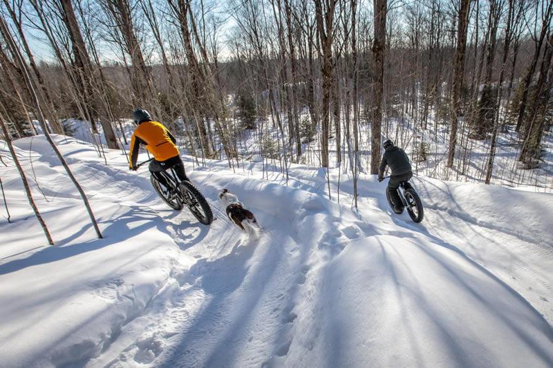 winter-fat-tire-biking-Thumb