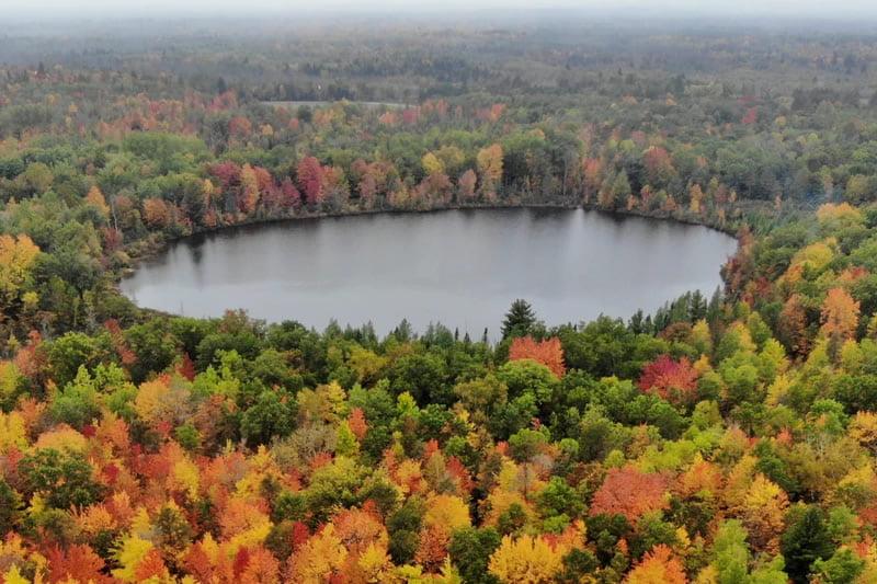 fall-color-report-thumb