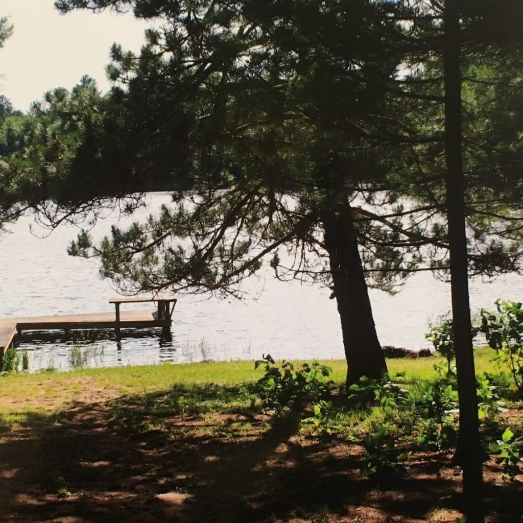A grassy front yard leads to the lake and dock, with a large evergreen tree off to the right