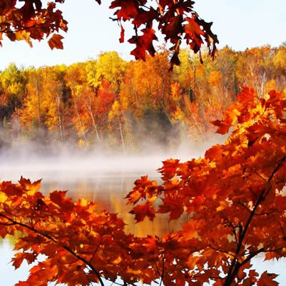 Fall- Color-Tours-web